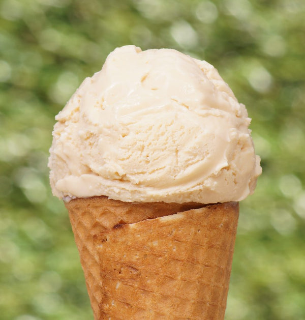 Salcombe Dairy Ice Cream - 500ml