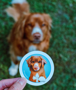 Finnigan Toller Stickers