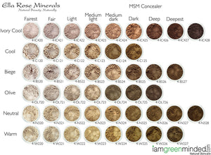 MSM Non Comedogenic Makeup Concealer Shade Chart