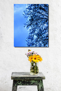 Abstract Reflection Blue  - Wall Art