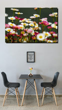 Load image into Gallery viewer, Daisy  - Wall Art