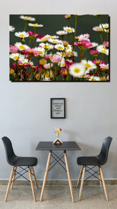 Daisy  - Wall Art