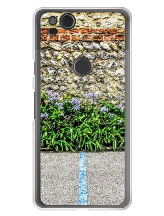 Paint, Flowers and wall - Google Hard Case