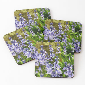 Bluebell - Coasters and Placemats