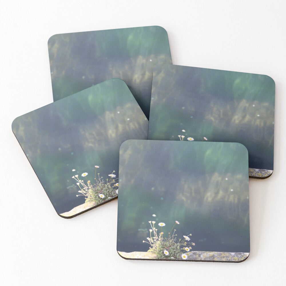 Small Daisy - Coasters & Placemats