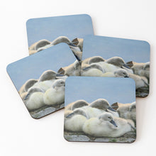Load image into Gallery viewer, Cygnets - Coasters & Placemats