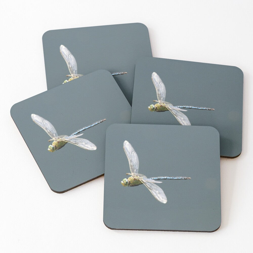Dragonfly - Coasters & Placemats