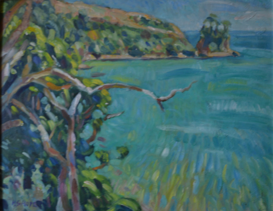 Titirangi, Marlborough Sounds by Henry Hope
