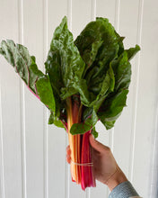 Load image into Gallery viewer, Rainbow Chard bunch