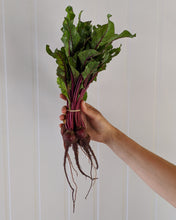 Load image into Gallery viewer, Baby Beets