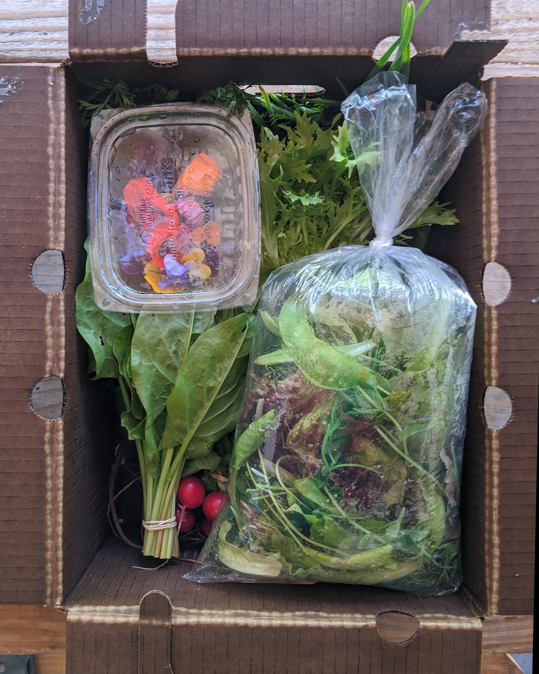 Sample Vegetable Box