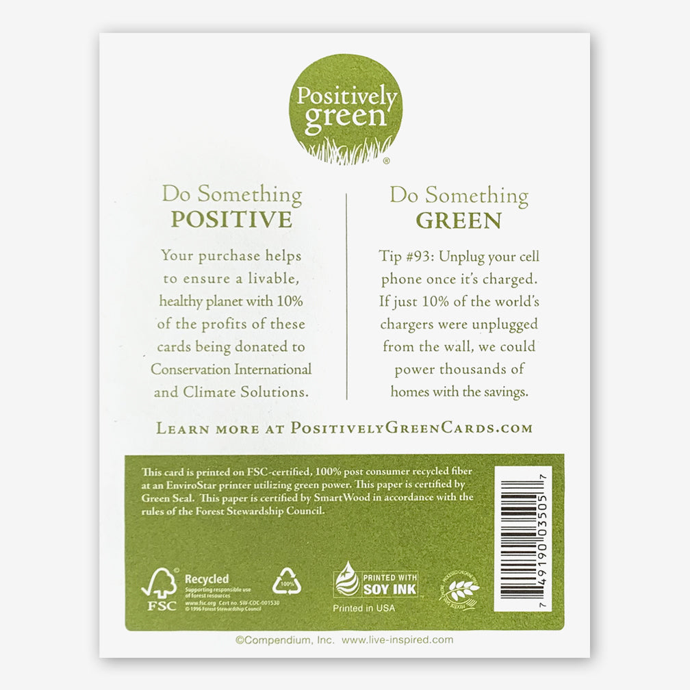 "Positively Green Cards: ""Great and beautiful is the world..."" —Johann Wolfgang von Goethe"