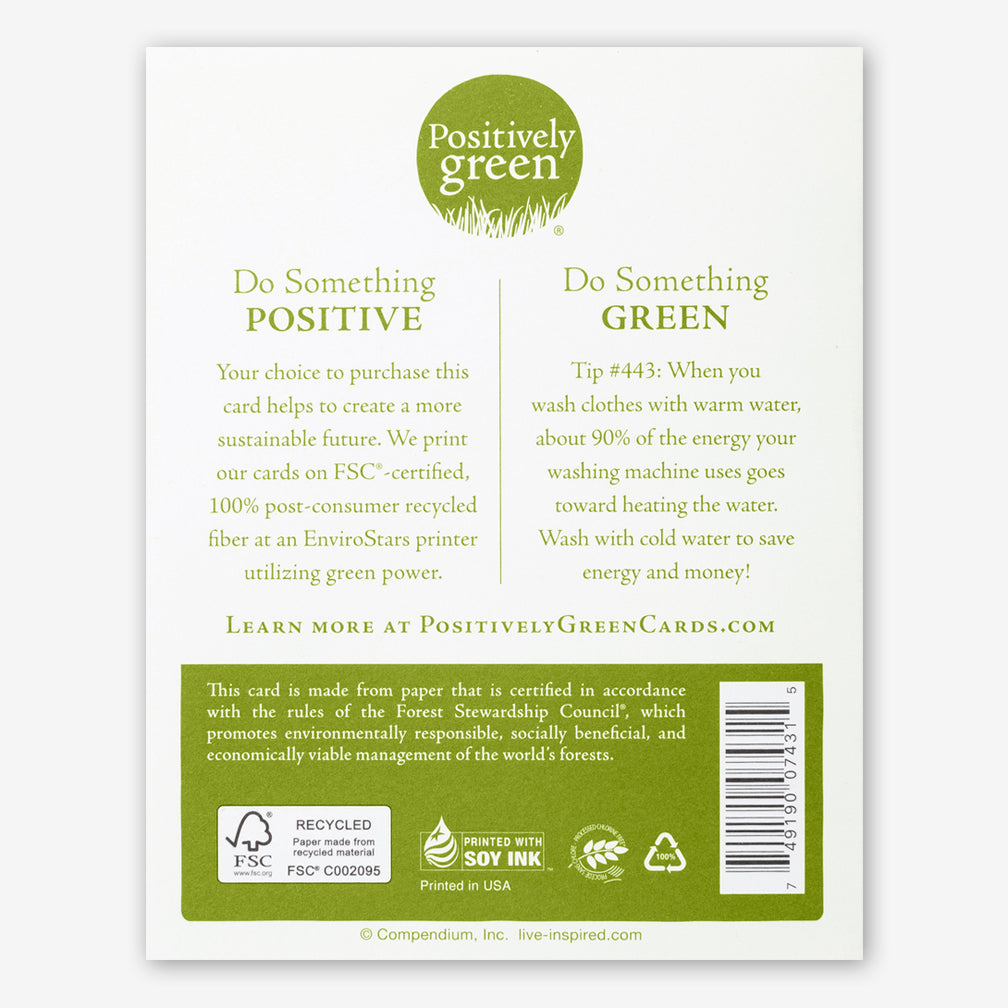 "Positively Green Cards: ""The sun is new each day."" —Heraclitus"