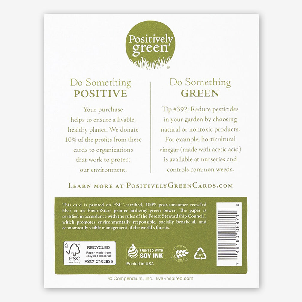 "Positively Green Appreciation/Thank You Card: ""You are so infinitely sweet"" —Zelda Fitzgerald"