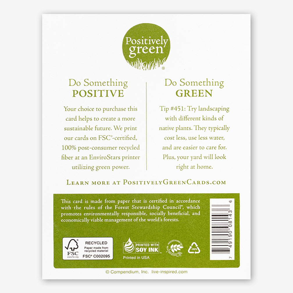 "Positively Green Cards: ""Kind thoughts, kind words, kind deeds, how brightly they always shine…"" —Mary Anderson"