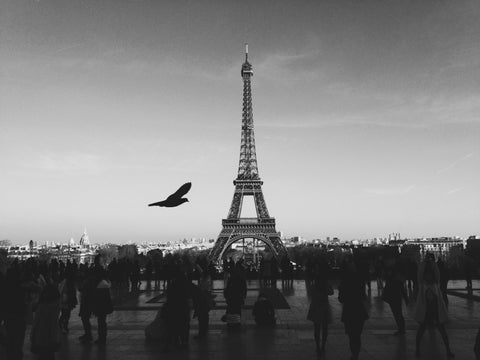 Eiffel Tower Black & White Wall Mural