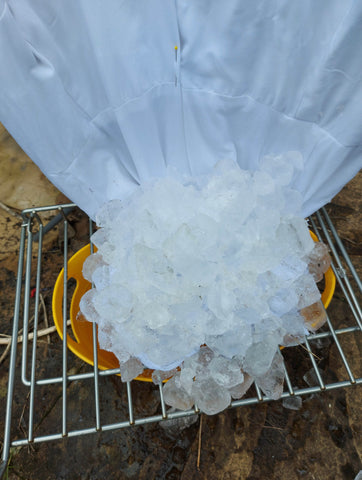 Image of white dress with ice over bottom half
