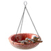 Wholesale Dragonfly Ceramic Bird Bath/Feeder - DII Design Imports