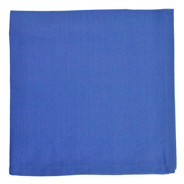 Blueberry Napkin - DII Design Imports
