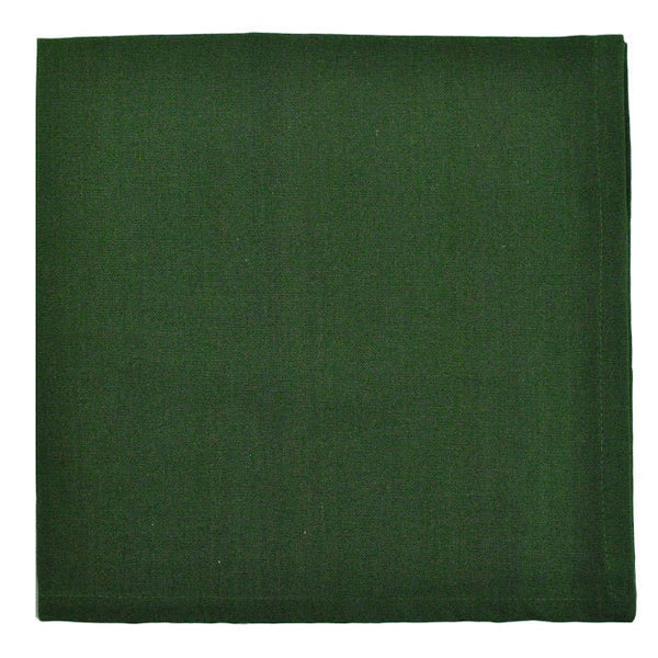 Loden Napkin - DII Design Imports