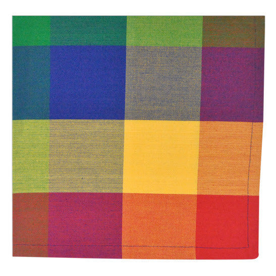 Wholesale Palette Check Indian Summer Napkin - DII Design Imports