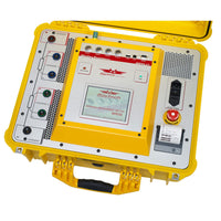Raytech WR50-12 Winding Resistance Meter with Demagnetization and Discharge, 50 Amp 2 Channel (Rental)