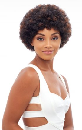Femi Collection Human Hair Afro Wig
