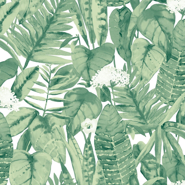 Tempaper Tropical in Forest Green