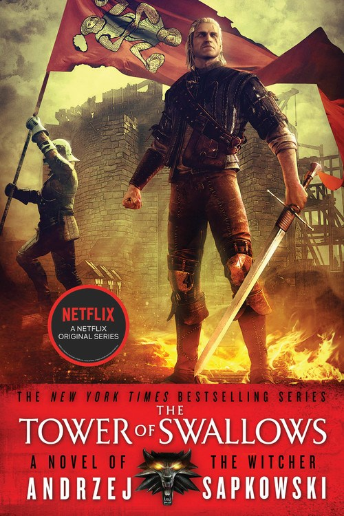 The Tower of Swallows (Witcher #4)