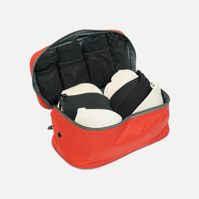 Bra & Underwear Travel Packing Cube