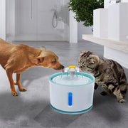 PAWSR Comfort ™ Pet Fountain
