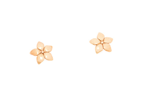 9ct Earrings In Yellow Gold Flower Shape
