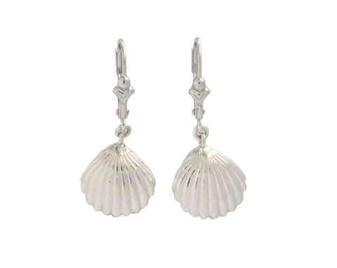 Silver Earrings With Cockle Lemon Shell