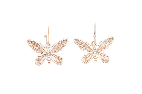 Silver Earrings With Birdwing Butterfly 16mm x 7mm