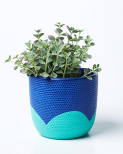 Petal Pot | Jones and Co | Navy/Mint
