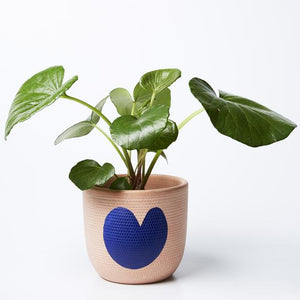 Heart Pot | Jones and Co | Peach
