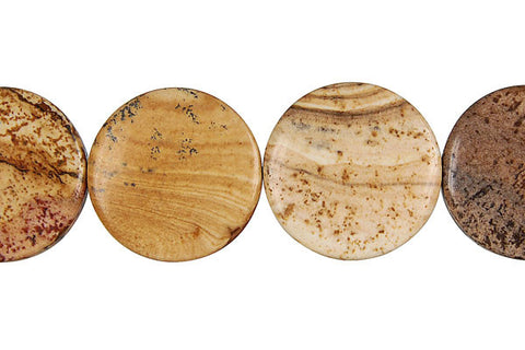 Picture Jasper Coin Beads
