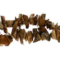 Picture Jasper Chips Beads