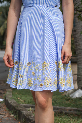 Celosia Pinstripes Skater Dress with Placement Embroidery