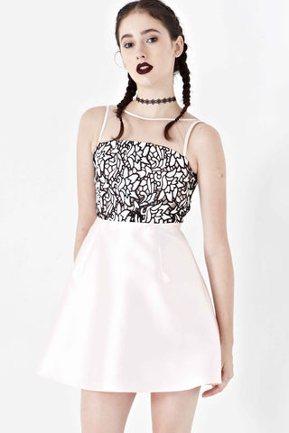 Twenty3 - Leila Lace Bodice Skater Dress in Champagne -  - Dresses - 1