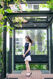 Willow Pleated Panel Dress in Navy Blue - Dresses - Twenty3