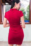 Corentine Bodycon Dress in Burgundy