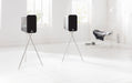 Q Acoustics Concept 300 inc Stand (Silver & Ebony) - pair - Yorkshire AV LTD