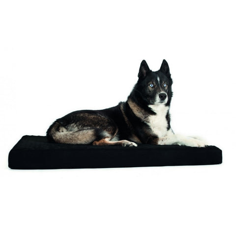 Back on Track Dog Mattress