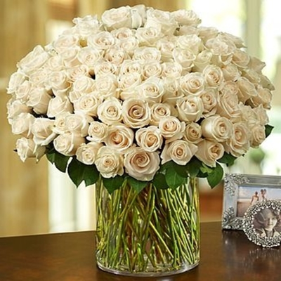 100 Premium Long Stem White Roses