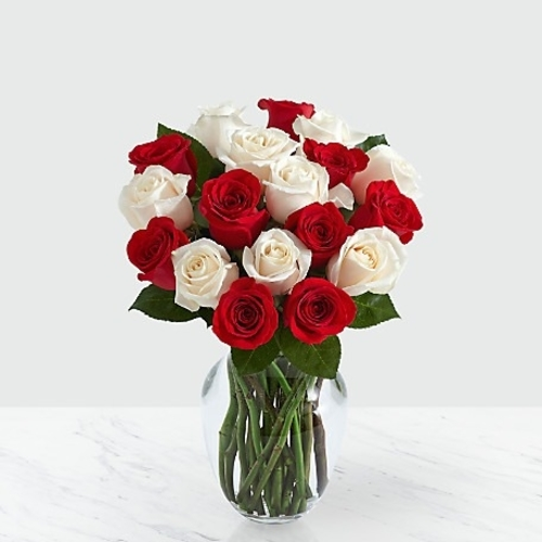 12 Red & White Vased Roses