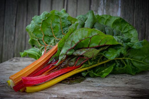 Five Color Silverbeet Chard (Rainbow Chard)