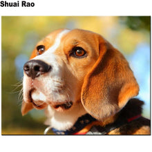 Load image into Gallery viewer, 5d Diy Diamond Painting Beagles animal