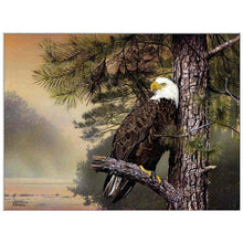 Load image into Gallery viewer, diamond painting eagle pine