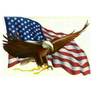 5d diamond painting american flag eagle